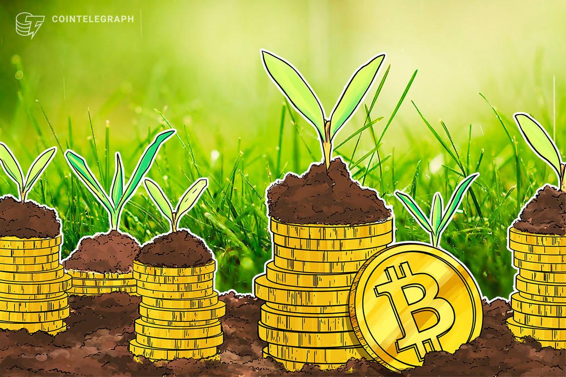 Los activos bajo gestión de Bitwise alcanzaron los mil millones de dólares, impulsados por inversores profesionales