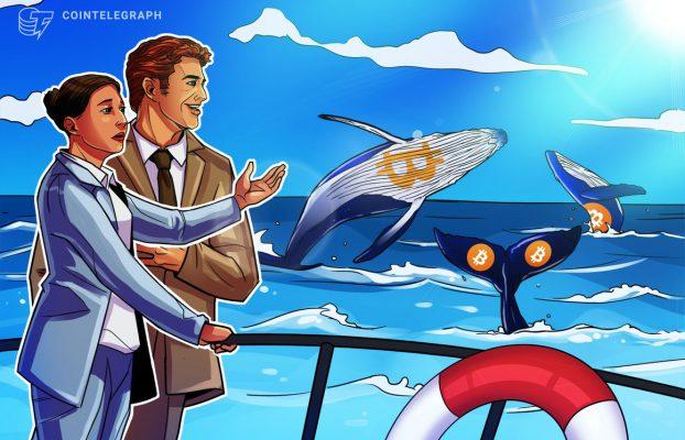 Instituciones y mineros acumulan durante la caída de Bitcoin