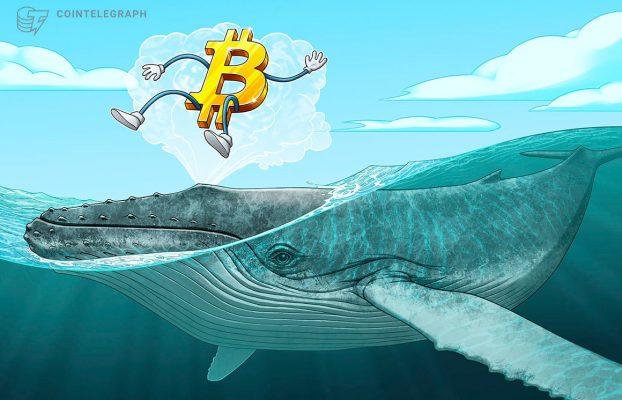 Una ballena de Bitcoin de 2010 mueve 100 BTC por primera vez en 11 años