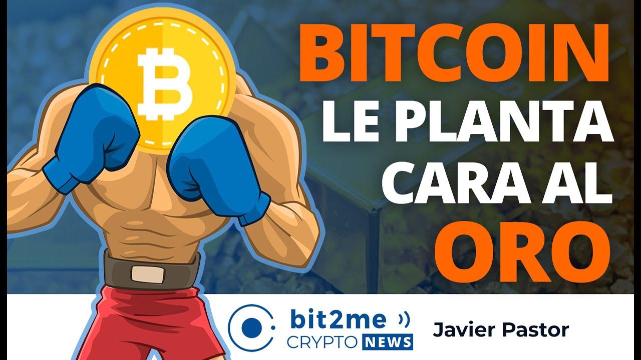 🔵 🤜🥇 BITCOIN le planta cara al ORO – Bit2Me Crypto News
