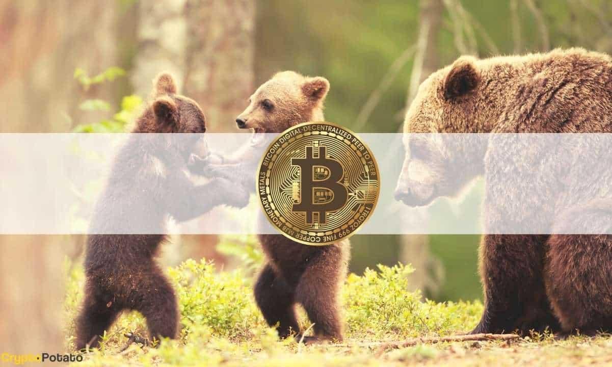 ¿Por Qué Bitcoin Se Ha Desplomado Un 15% En Menos De 24 Horas?