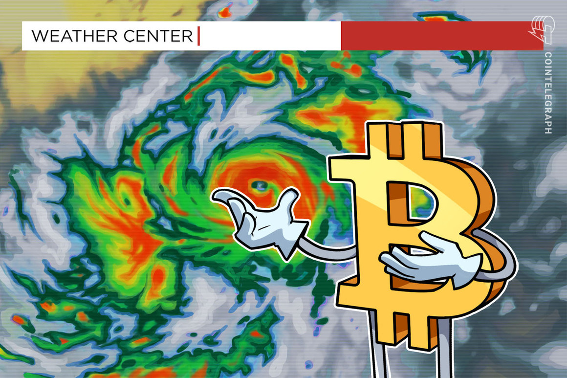 Inicia marzo, ¿qué hacer si bitcoin cae? Un análisis sobre el precio de bitcoin, otros criptoactivos y estafas