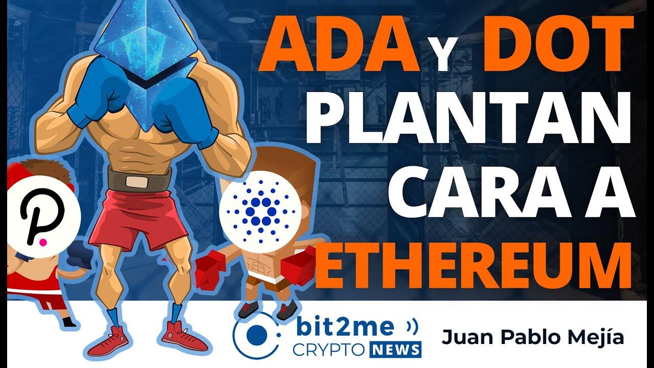 🔵 🥊 CARDANO (ADA) y POLKADOT (DOT) plantan cara a ETHEREUM – Bit2Me Crypto News