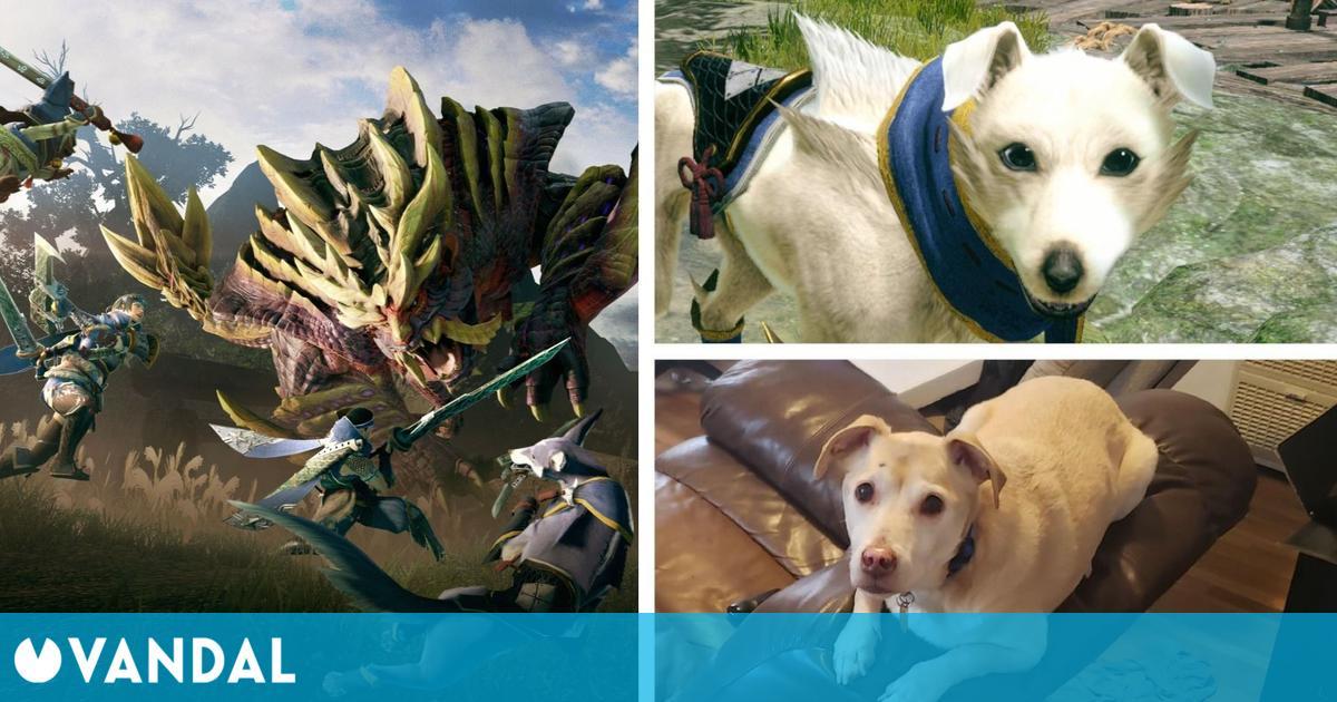 Monster Hunter Rise: Jugadores inmortalizan a sus mascotas como canynes y felnyes