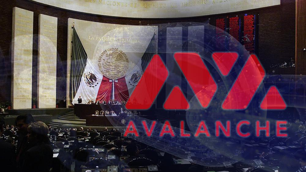 Congreso regional de México validará documentos en la blockchain de Avalanche