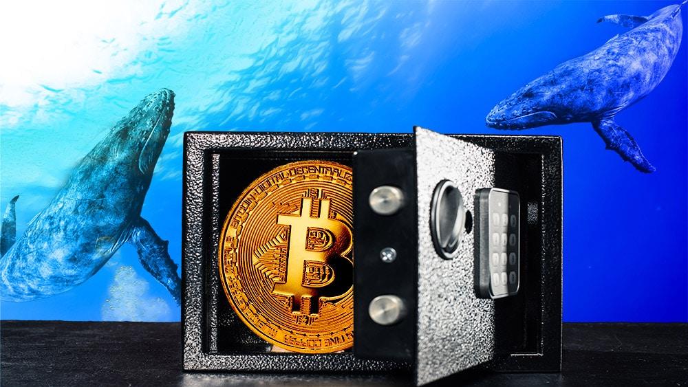 Parte de los bitcoins en manos de las ballenas se mueve a direcciones de menor balance