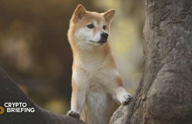 Dogecoin lucha por reanudar la tendencia alcista a pesar de la renovación