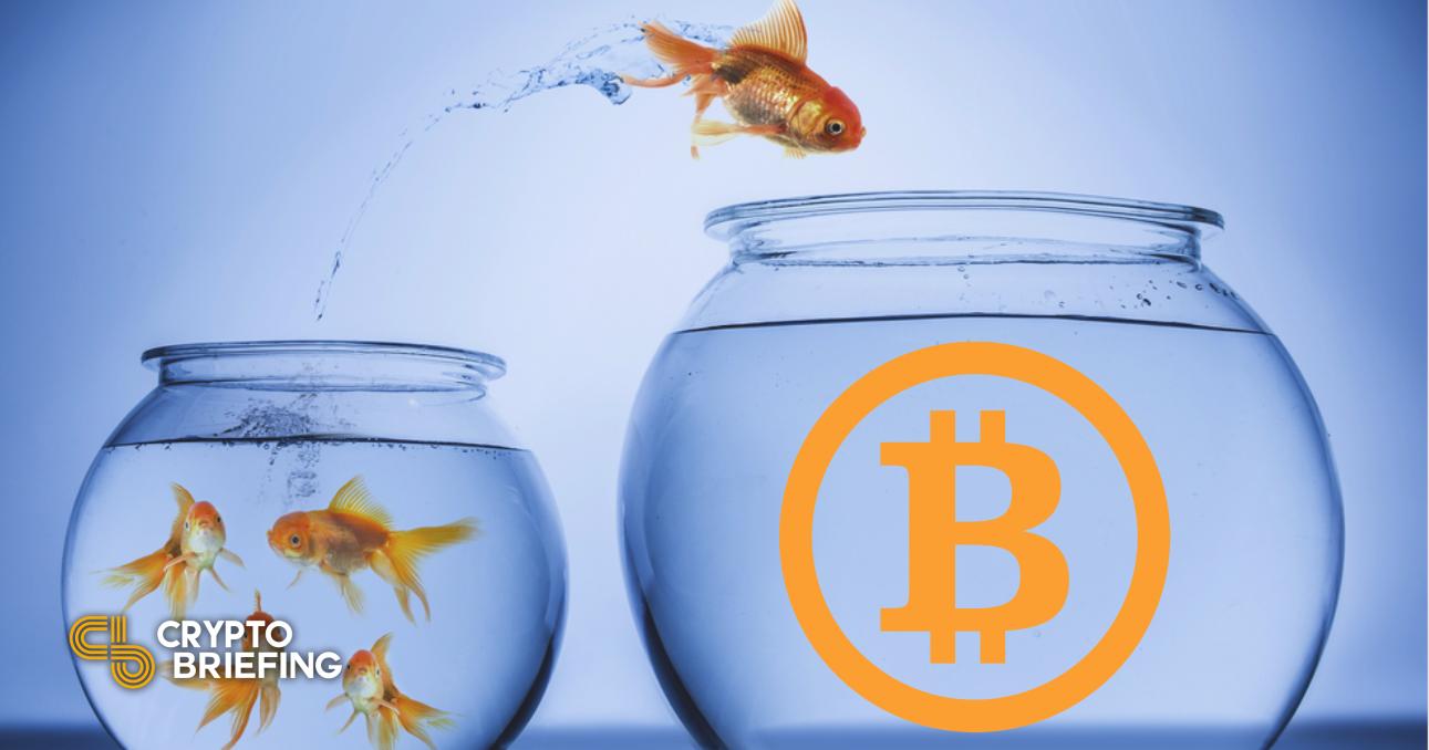 Bitcoin puede retroceder poco antes de nuevos máximos históricos