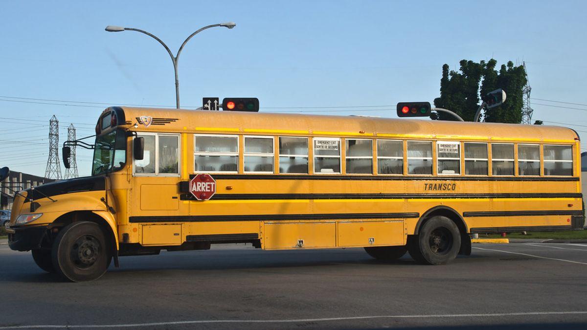 Por qué hay líneas negras a los lados de los buses escolares