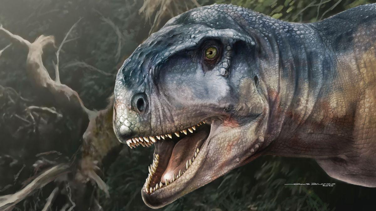 Descubren dinosaurio en Argentina que lucía como un T.Rex cabezón