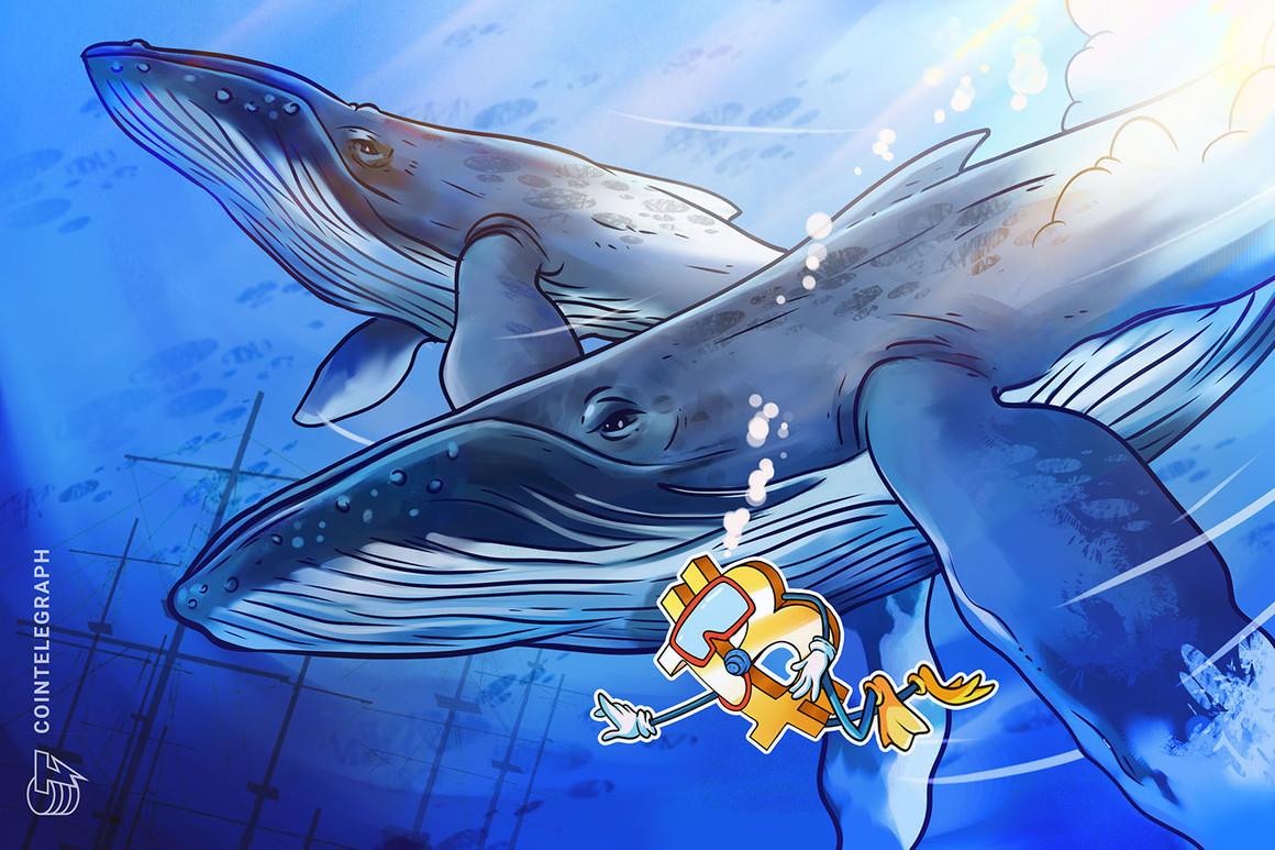 Los grupos de ballenas sugieren que este nivel clave de Bitcoin puede desencadenar un alza explosiva