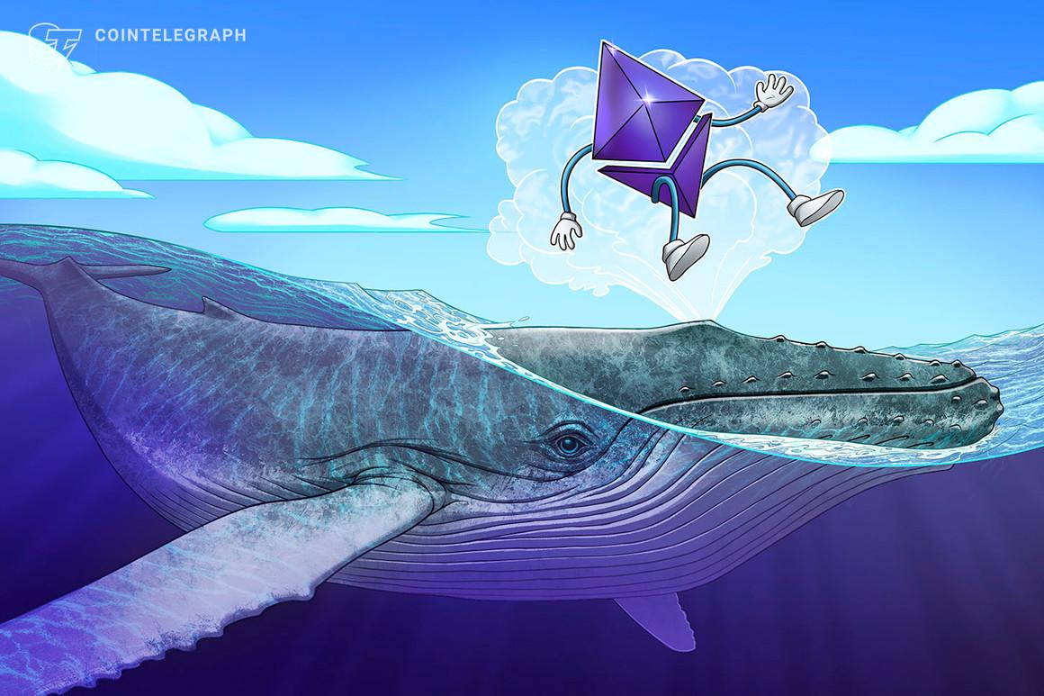 analizando el comportamiento de las ballenas de Ethereum
