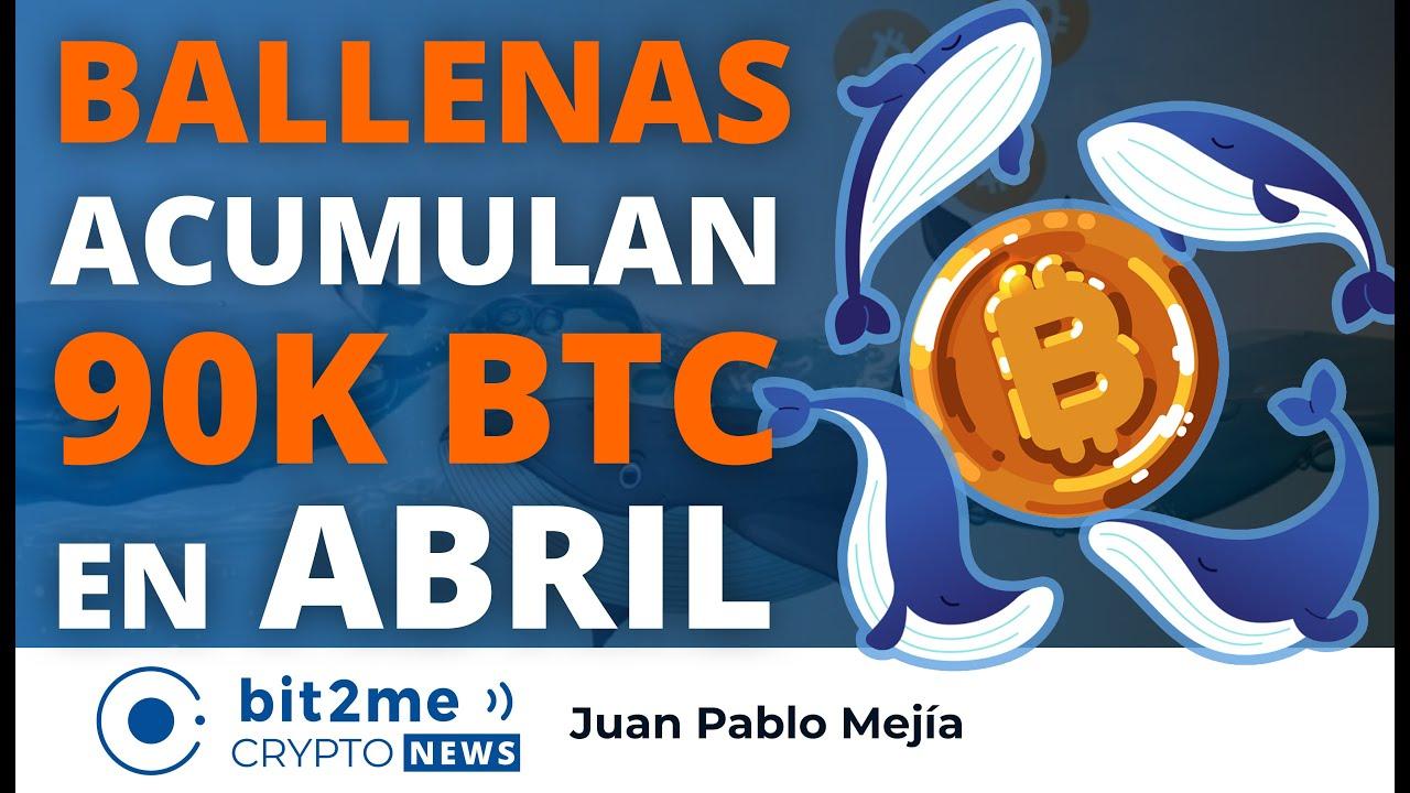 🔵 🐋 BALLENAS acumulan 90K BITCOIN en abril – Bit2Me Crypto News