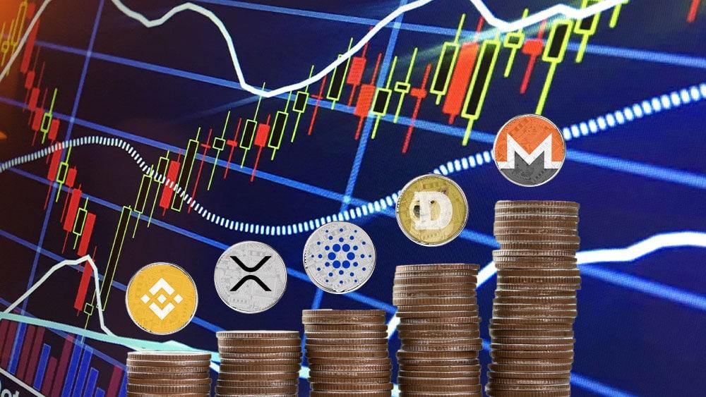 Monero y Dogecoin lideran el top semanal en medio del derrumbe generalizado del mercado
