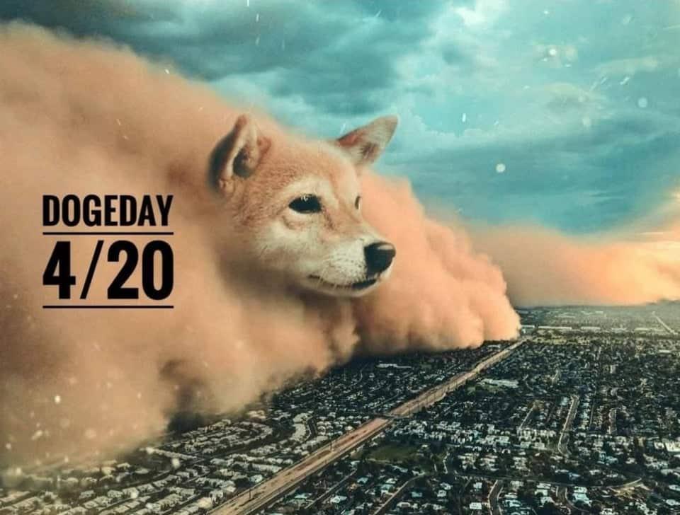 """Dogecoin Decepciona Con Una Caída Del 32% El Día De Su """"Cumpleaños"""""""
