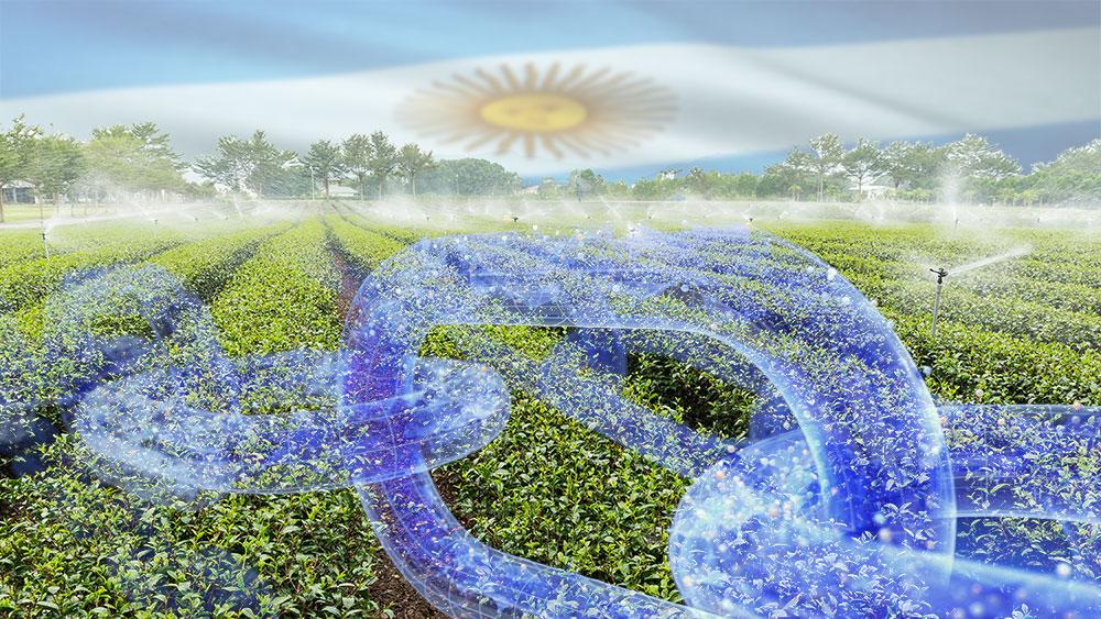 Argentina toma la delantera en aplicaciones blockchain para el uso eficiente del agua