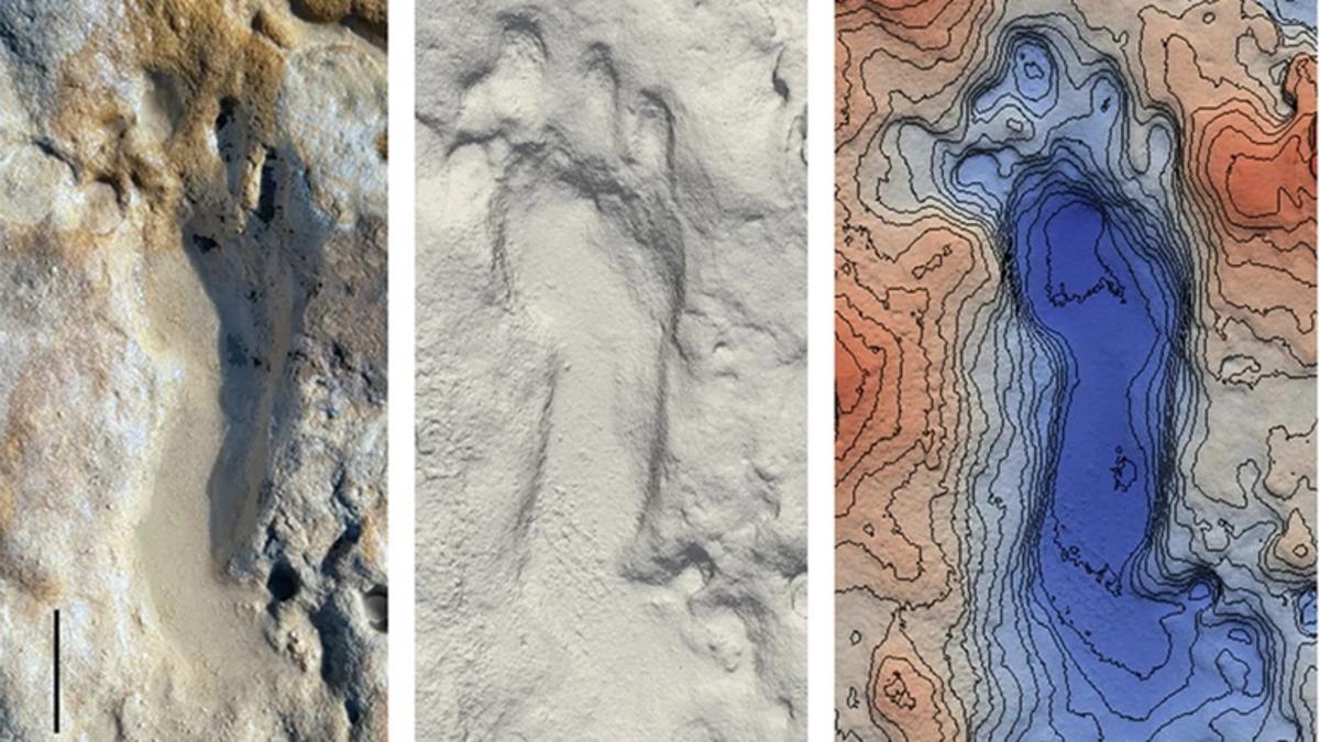 Encuentran decenas de huellas de neandertal en una playa española