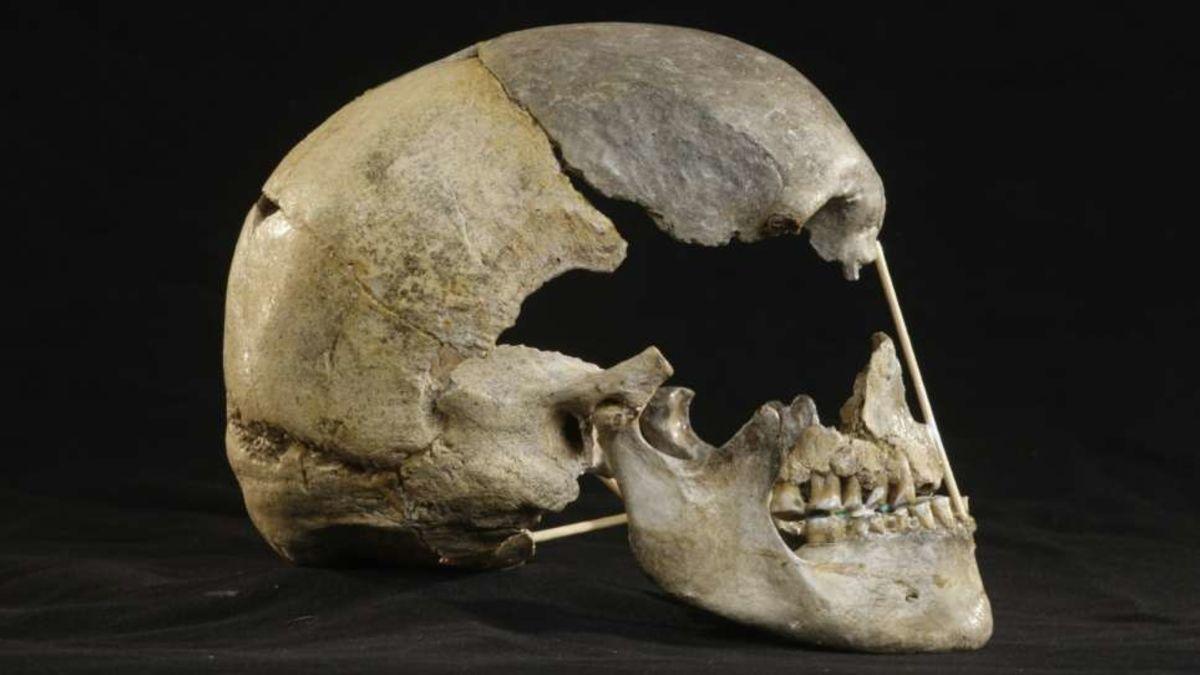Este cráneo puede contener el genoma humano moderno más antiguo