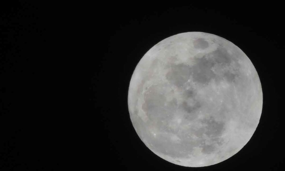 SpaceX llevará y aterrizará su Starship en la Luna
