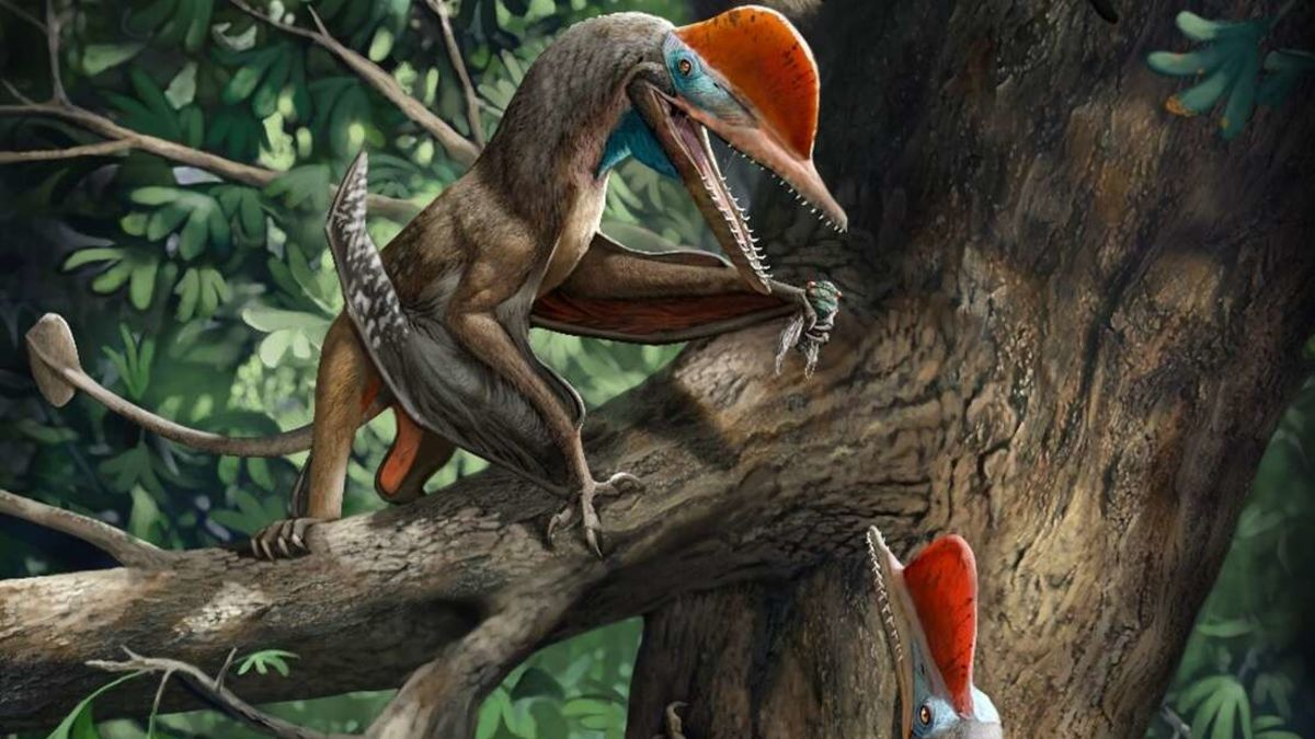 Así era el primer dinosaurio con pulgar oponible como el nuestro