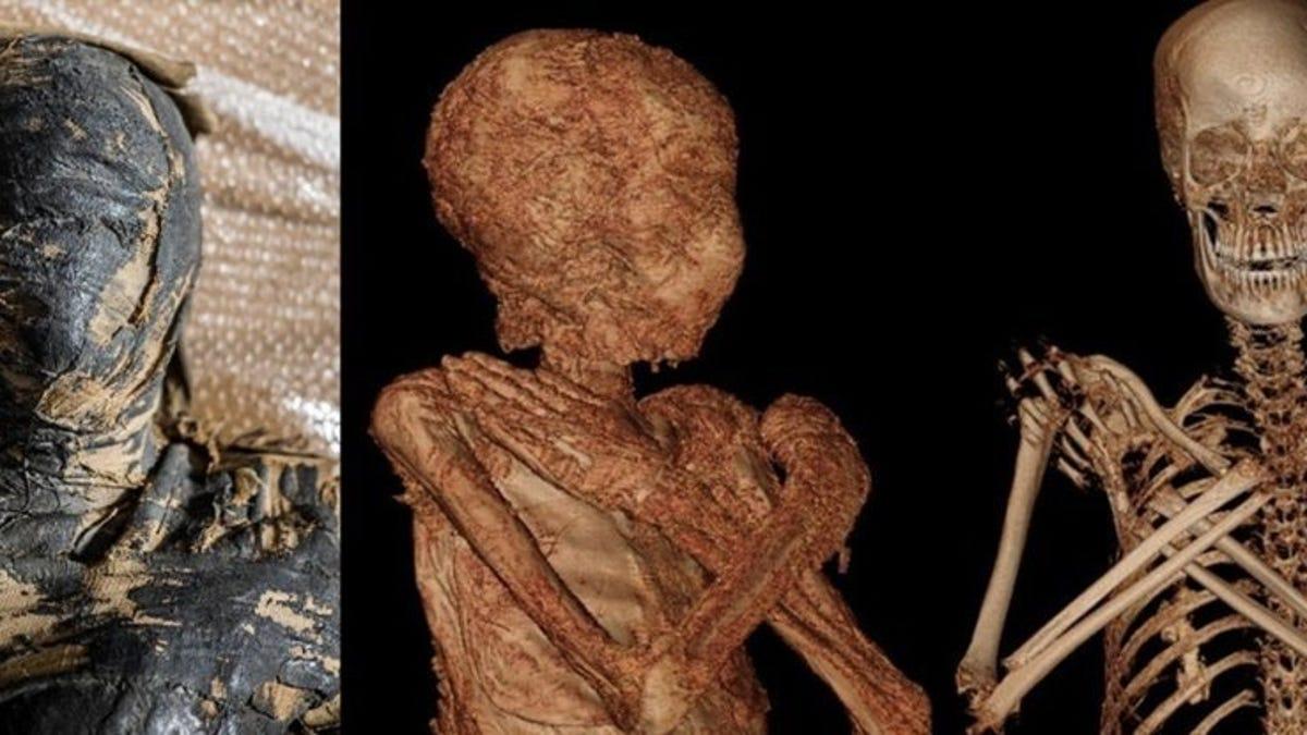Encuentran la primera momia embarazada del Antiguo Egipto