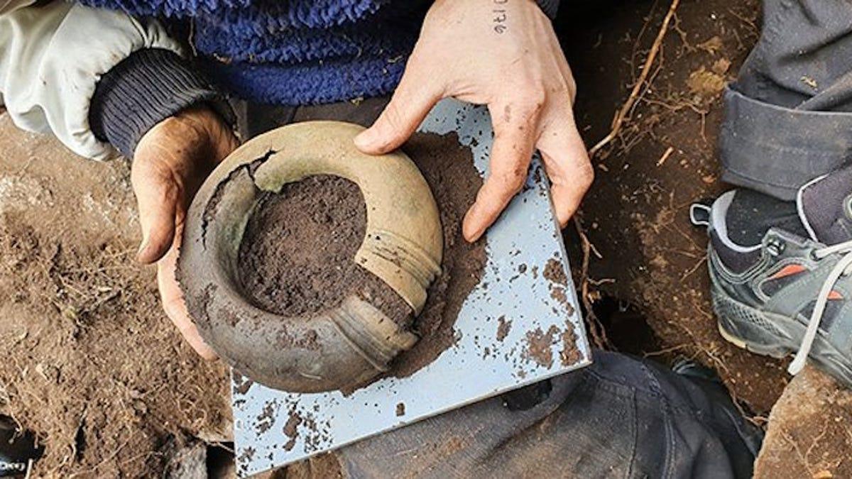 Encuentra en un bosque un tesoro de la Edad de Bronce
