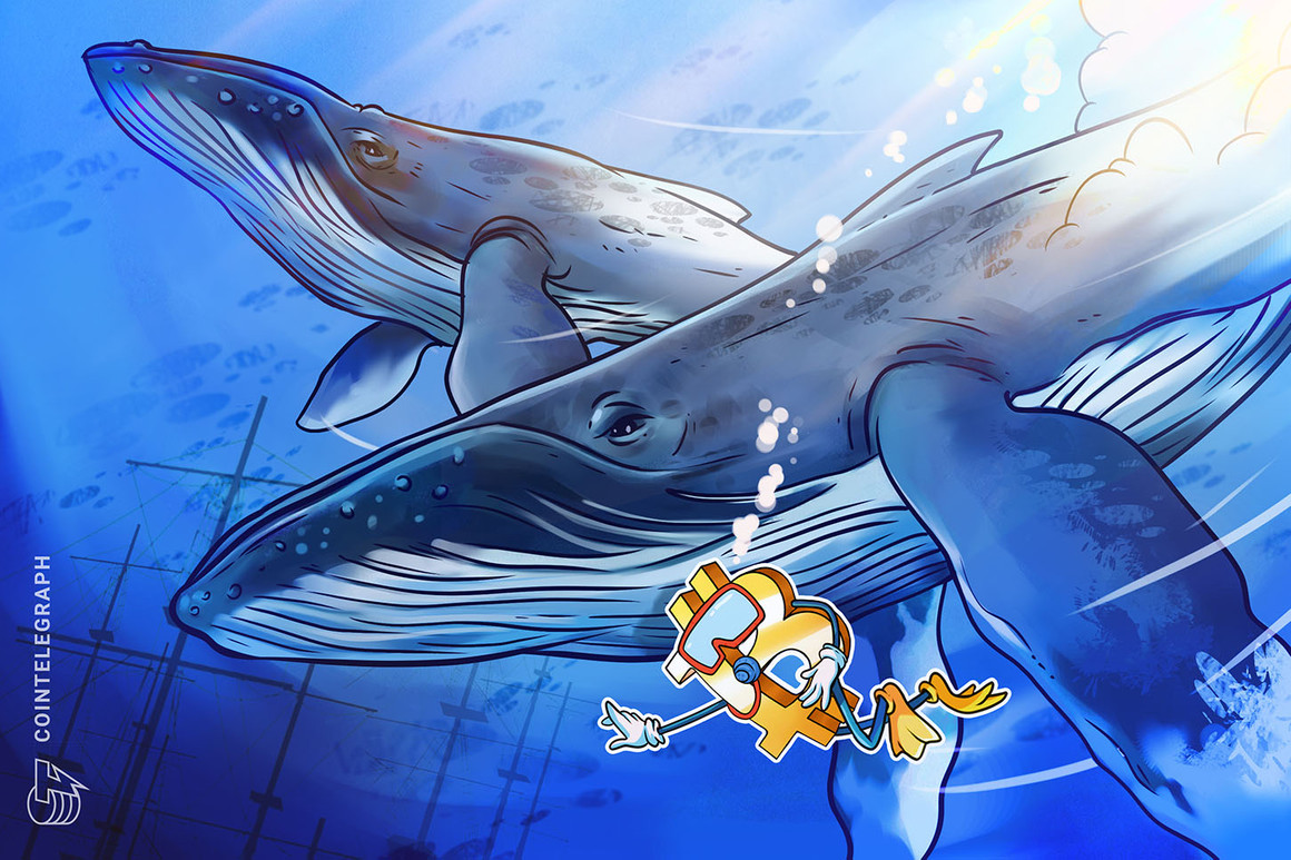 A medida que el precio de Bitcoin se tambalea, las billeteras 'ballena' pueden convertirse en una especie en peligro de extinción