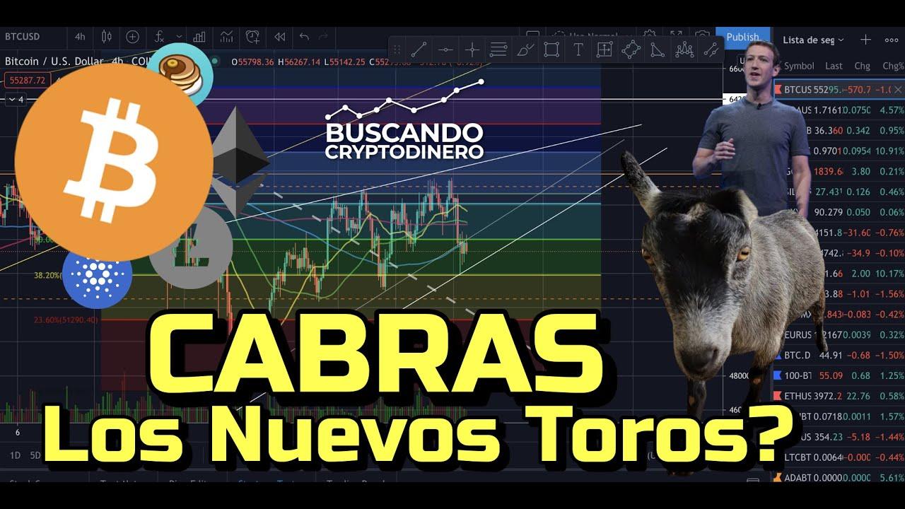 🐐 Bitcoin: Cabras = Los nuevos TOROS?? + 15 Monedas y Rifa en Litecoin!!!