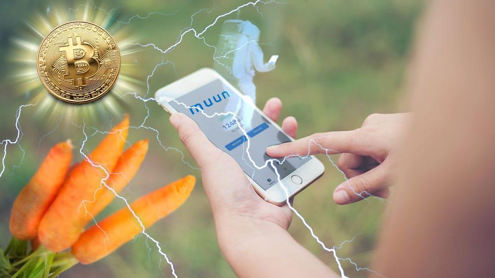 Taproot en Bitcoin reduciría a menos de 1 satoshi las comisiones en la red Lightning