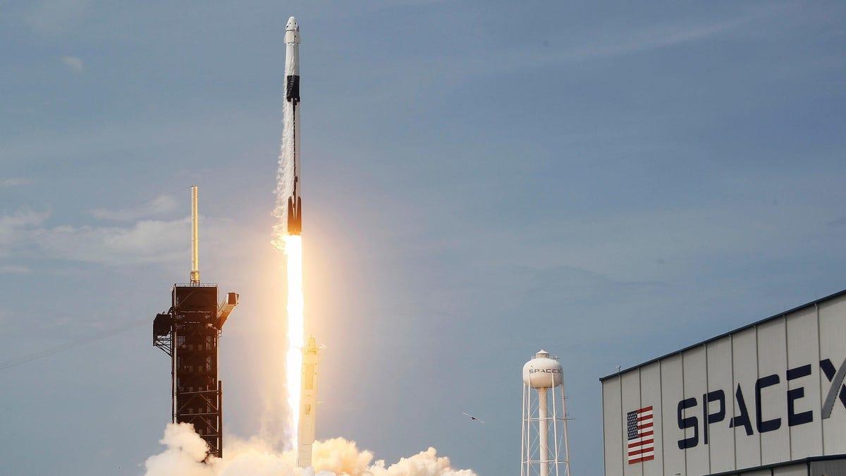 Elon Musk acepta Dogecoin como forma de pago para una misión lunar de SpaceX