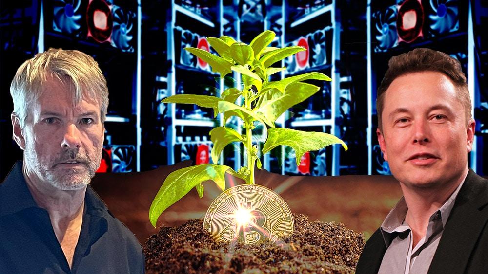 Elon Musk y Michael Saylor forman consejo para la minería verde de Bitcoin
