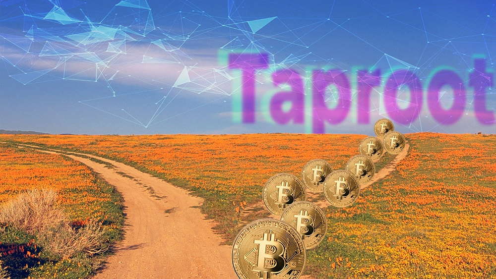 97% de los mineros estarían a favor de activar Taproot en Bitcoin