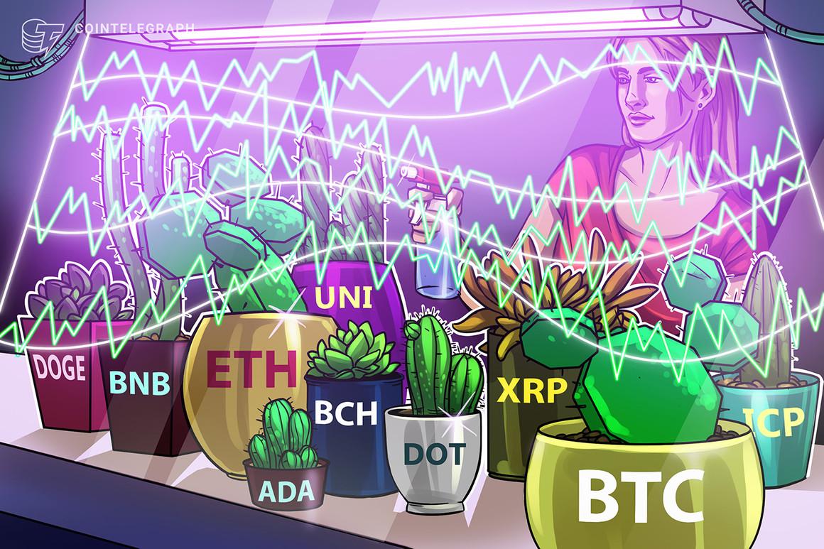 Análisis de precios al 7/6: BTC, ETH, BNB, ADA, DOGE, XRP, DOT, UNI, ICP, BCH