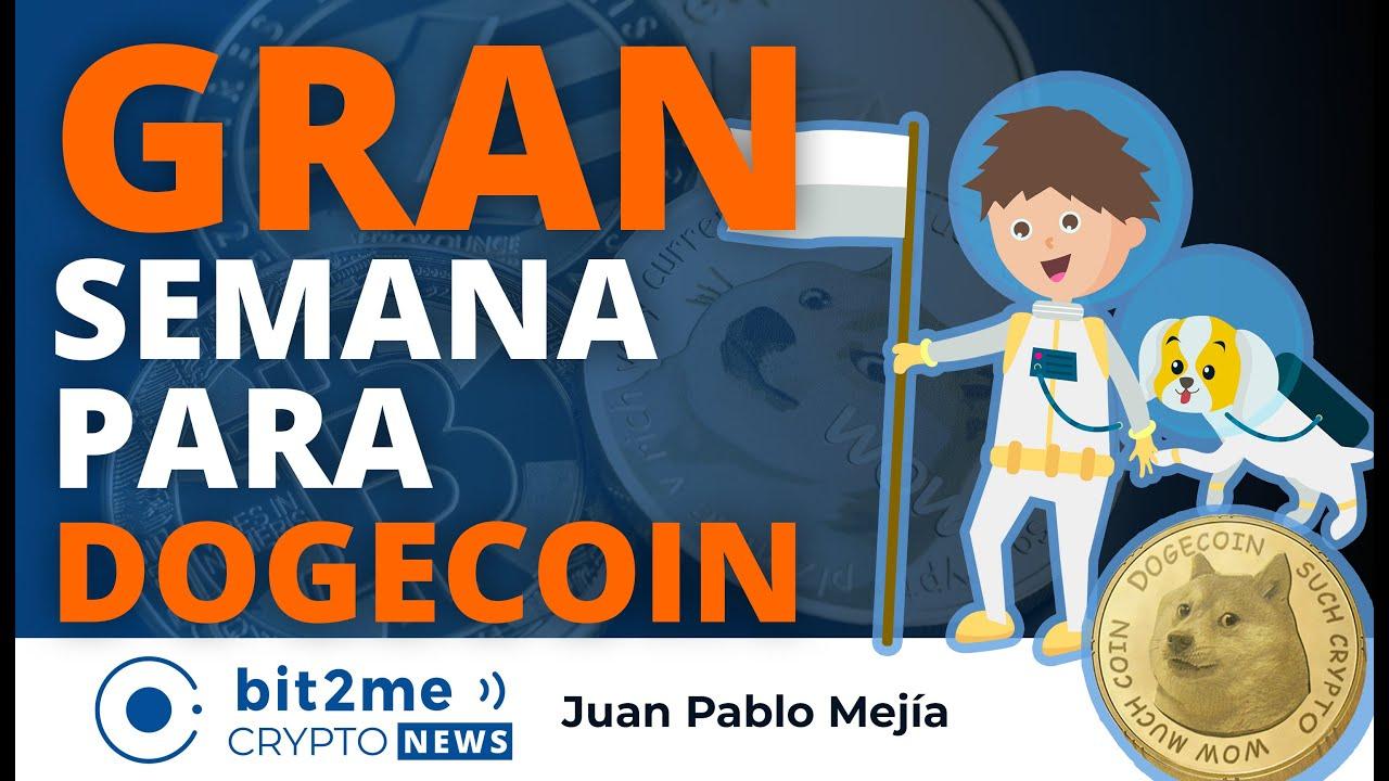 🔵 🐕 GRAN semana para DOGECOIN – Bit2Me Crypto News