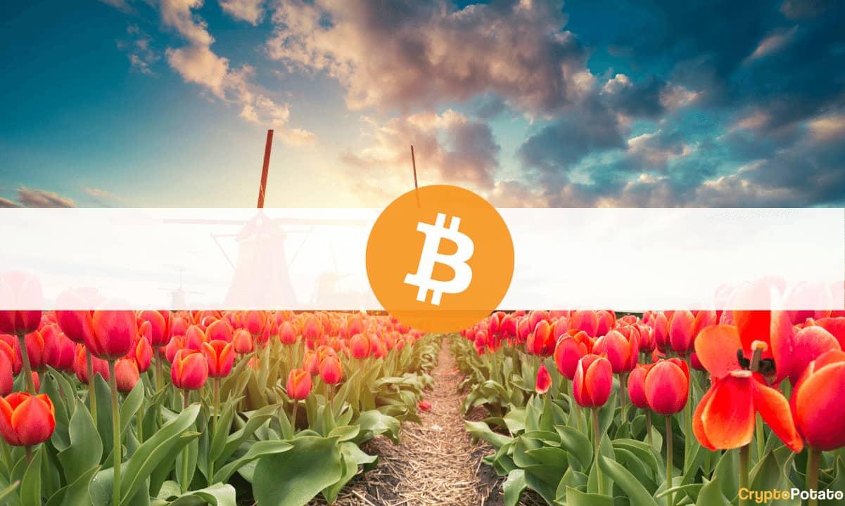 Países Bajos Debe Prohibir Bitcoin