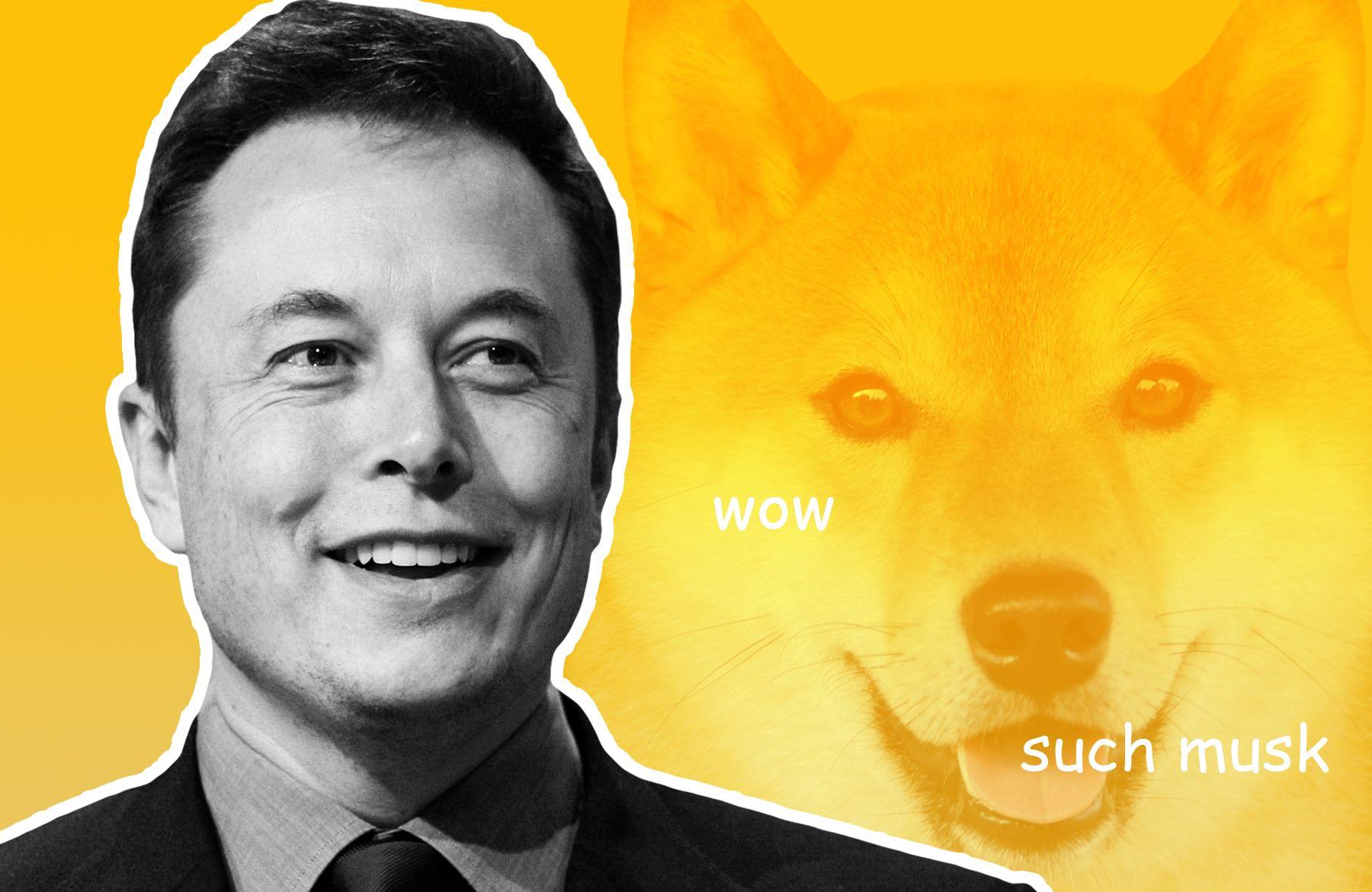 ¿Elon Musk deja a Doge atrás por una nueva moneda de perro?