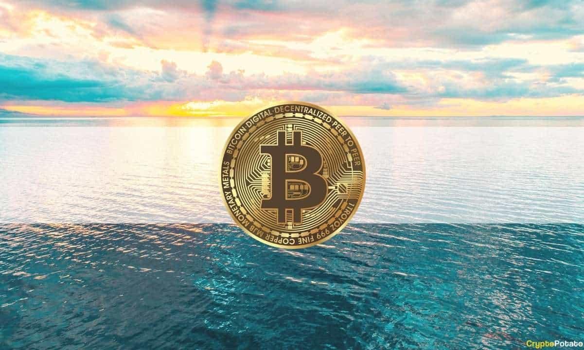 Bitcoin Recupera 5000 USD Tras Caer Por Debajo De Los 30k Dólares