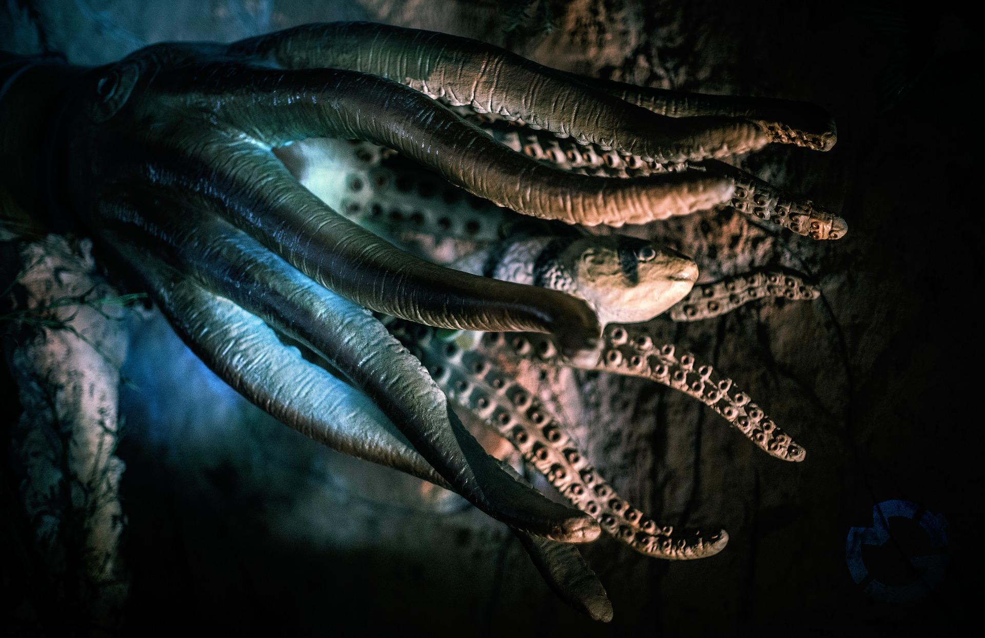 La mejor experiencia de derivados descentralizados: la visión del protocolo Octopus