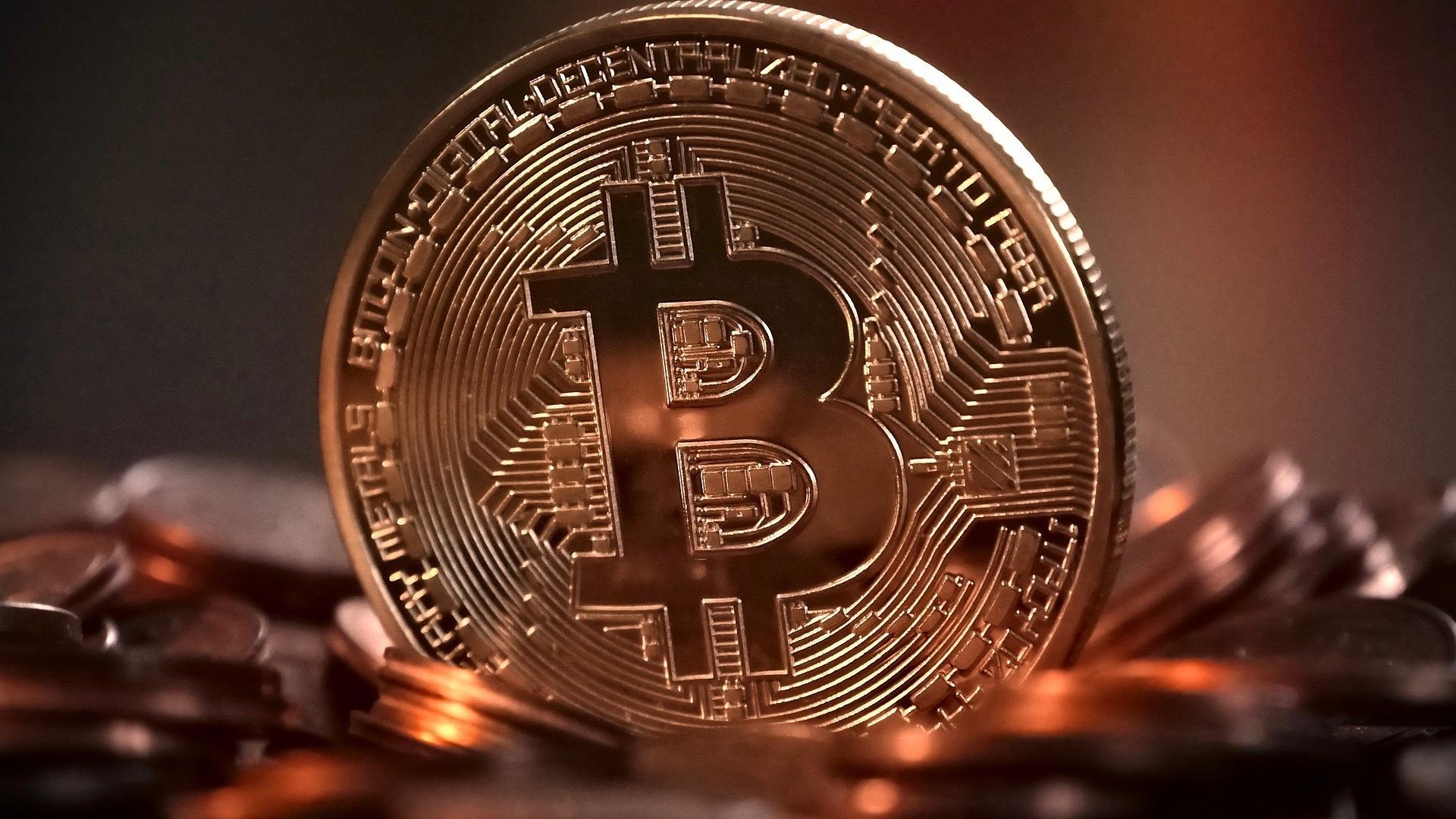 Ex-empleado de Cryptopia admite haber robado $ 170K en criptomonedas