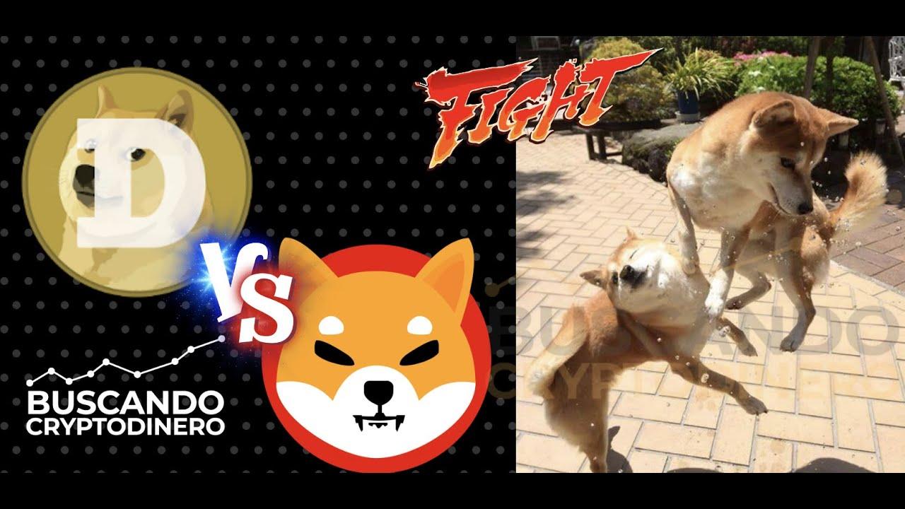 🥊🐕 Dogecoin vs ShibaInu ➤ Batalla de Caninos !!! #dogevsshiba