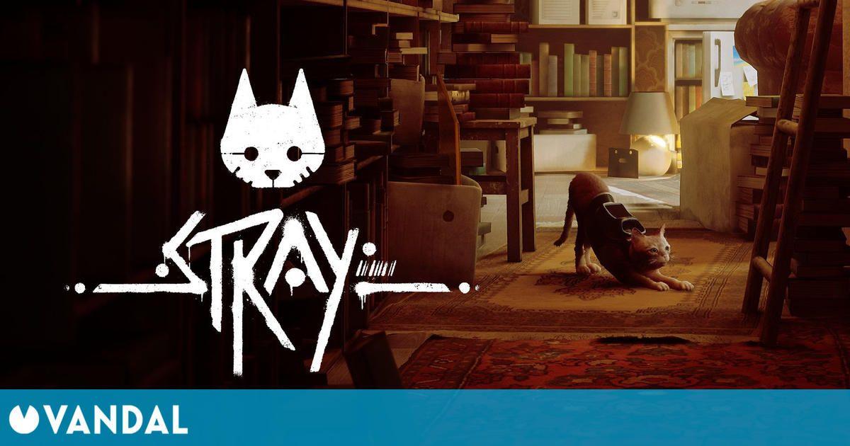 Stray, el gato ciberpunk, nos deleita con nuevo gameplay y marca su estreno para 2022
