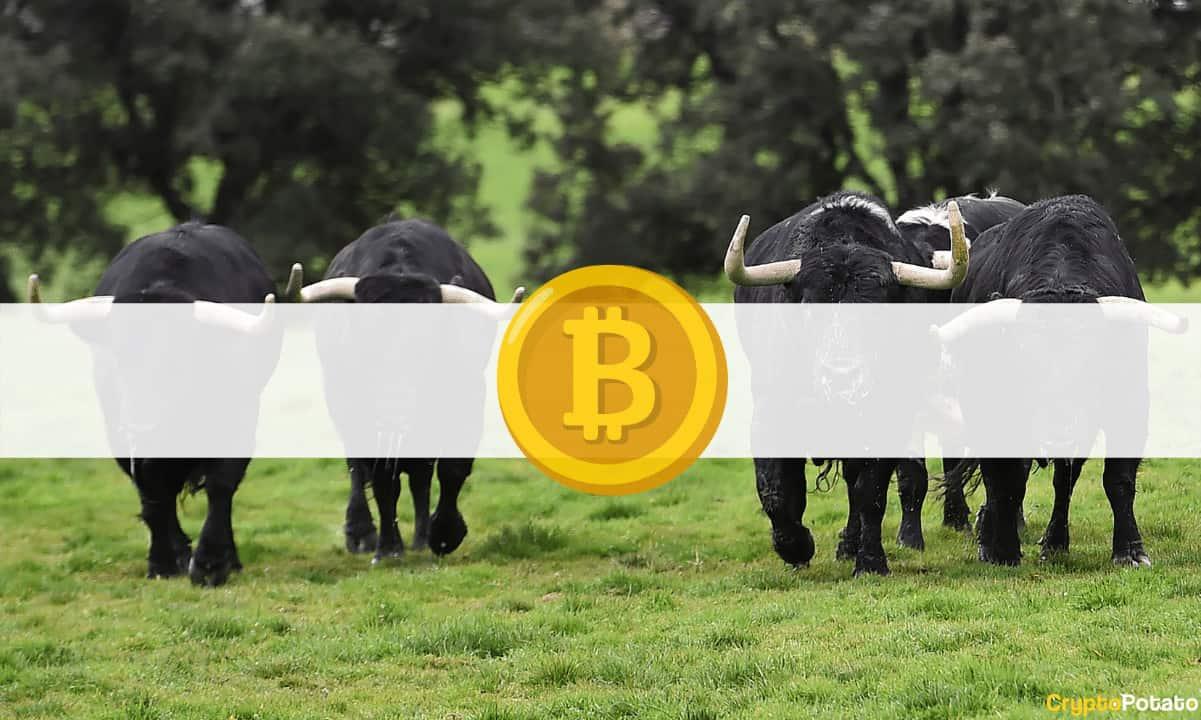 Los Futuros De BTC Se Disparan Hasta Los 48k USD En Binance Futures