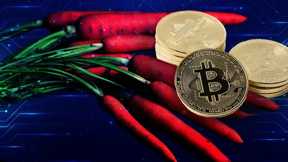 Con la llegada de taproot ¿bajarán las tarifas de red en Bitcoin?