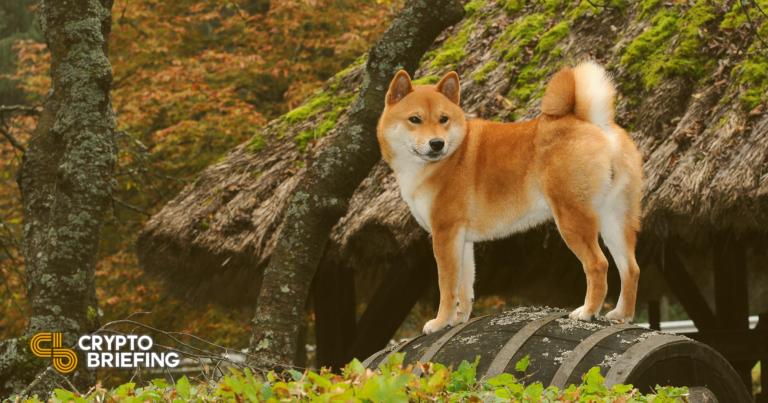 Dogecoin parece preparado para entrar en un nuevo rally