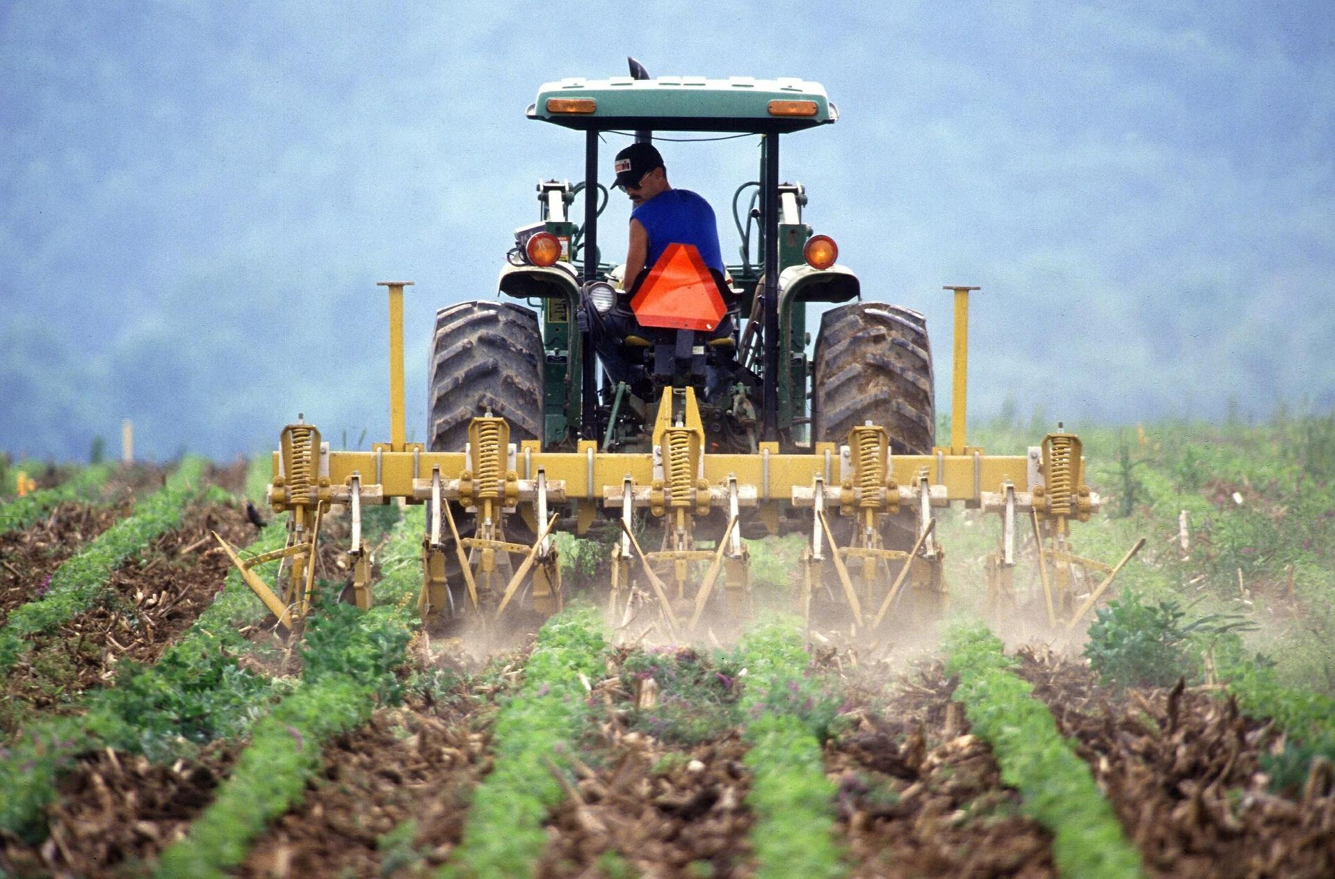 Free TON DeFi Alliance anuncia el programa de cultivo de rendimiento de 15 millones de toneladas