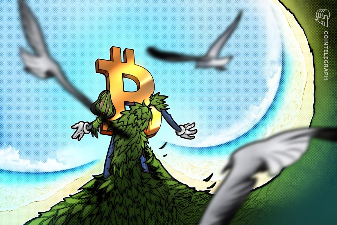 La minería de Bitcoin con energías renovables puede asegurar futuro energético limpio