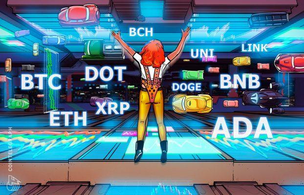 BTC, ETH, BNB, ADA, XRP, DOGE, DOT, UNI, BCH, LINK
