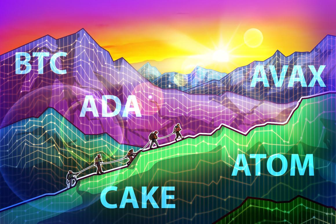 BTC, ADA, AVAX, CAKE, ATOM