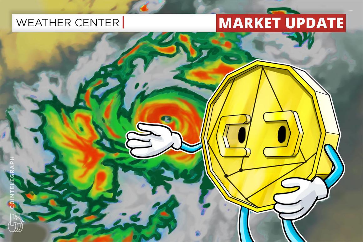 Los traders esperan una nueva temporada de altcoins ahora que Bitcoin convirtió el nivel de los USD 45,000 en soporte
