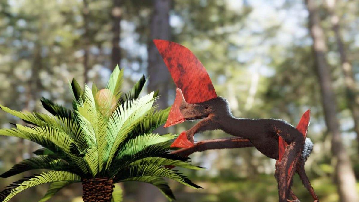 Una redada en Brasil revela un reptil de 100 millones de años